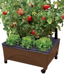 Emsco Group Raised Garden Bed for $20