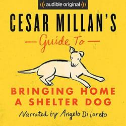 Bringing Home a Shelter Dog Guide Audiobook free