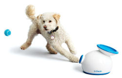 iFetch Automatic Ball Launcher for Dogs for $100