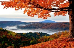 3-Star to 5-Star Hotels in Vermont from $59/nt