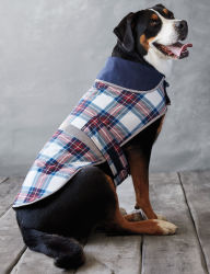Lands' End Plaid Dog Squall Jacket for $15