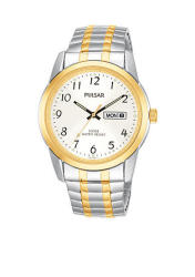 Pulsar Men's Two-Tone Silver Dial Expansion Watch
