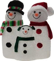 Snow Family Color Changing Holiday Light for $14